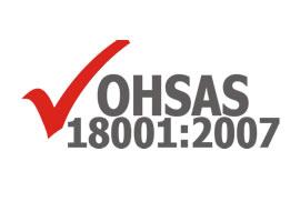 auditor interno ohsas